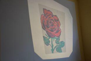 My Gallery (18/45)