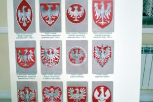 My Gallery (154/154)